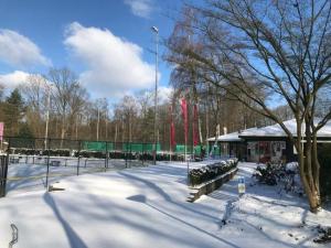 TVBD Winter Wonderland